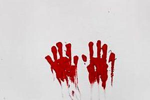 قتل رومینای دیگر این بار توسط دو برادرش با چوب و چماق + جزئیات