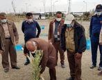 مراسم درختکاری در مجتمع معدنی چادرملو