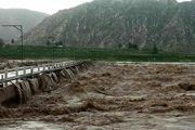 فاجعه سیل در پارسیان هرمزگان / 5 کشته در سیل فاجعه افرید + عکس
