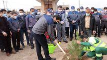 هر ایرانی، یک درخت
